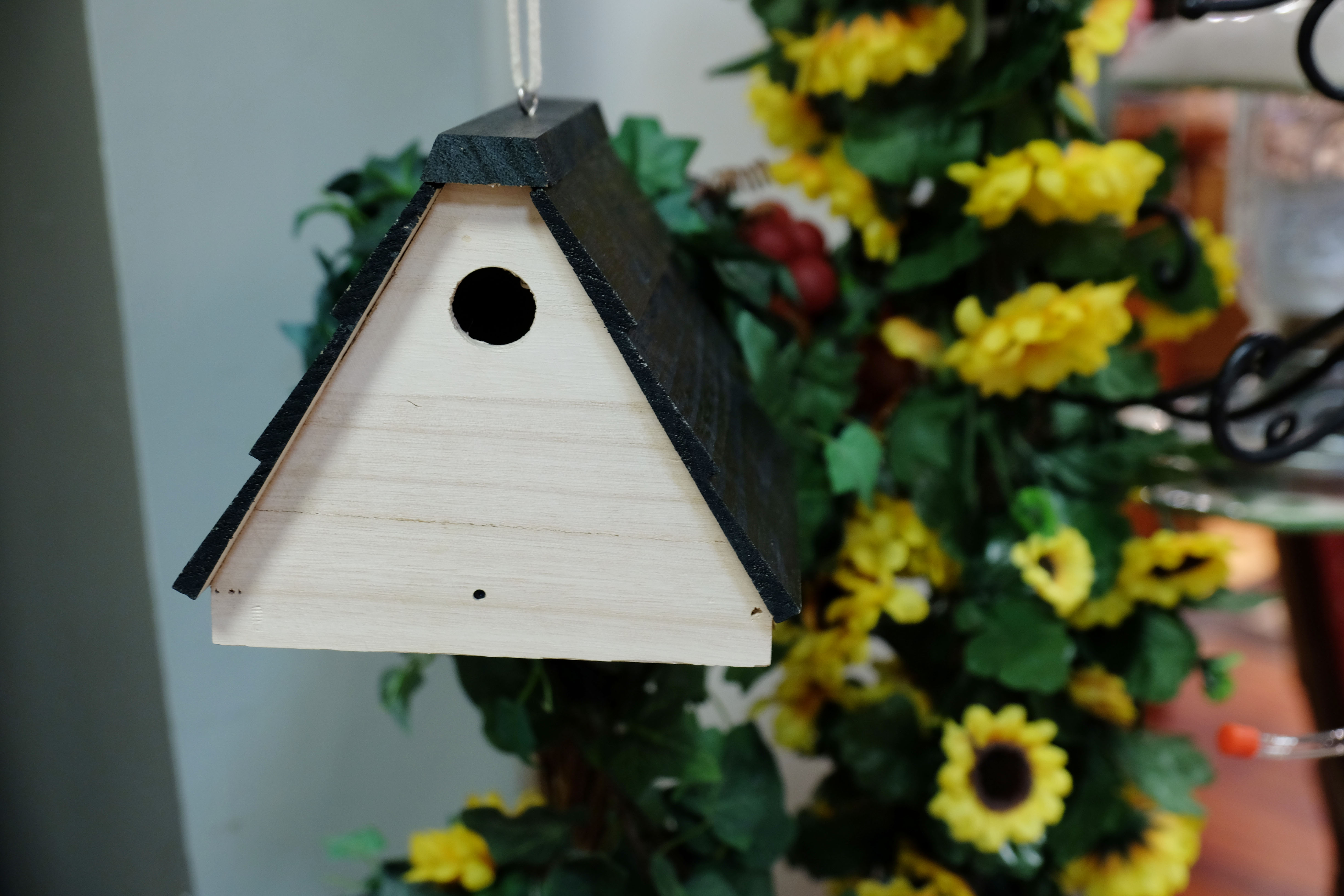 bird house hidden camera